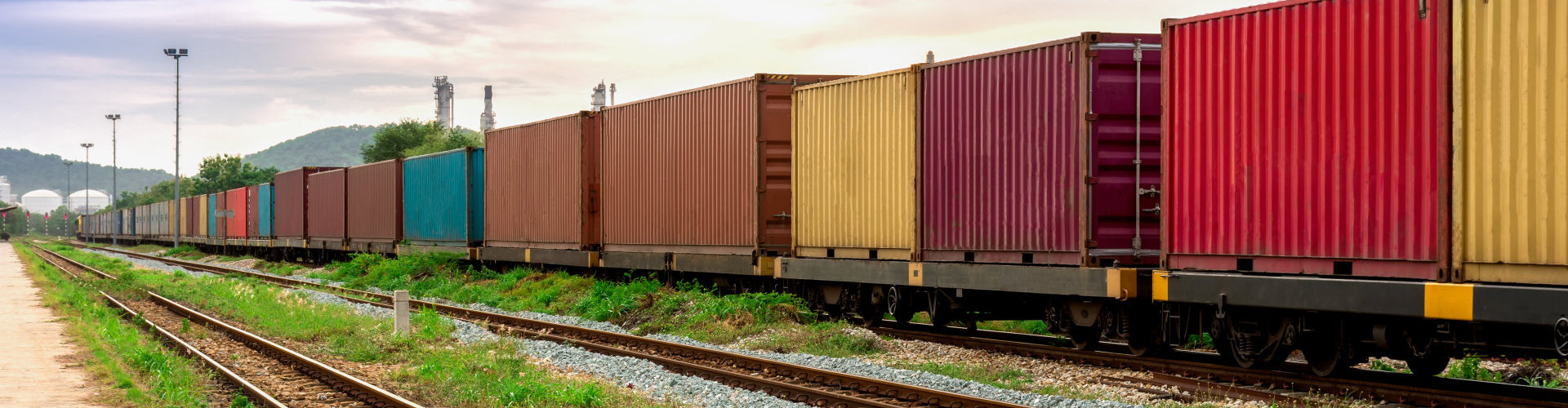 portrait of a containers